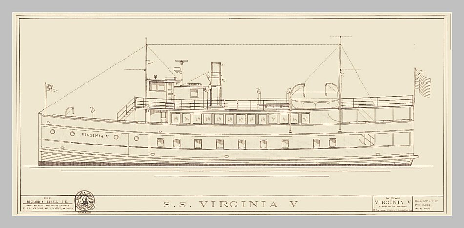 Virginia V Line Drawing by Rick Etsell